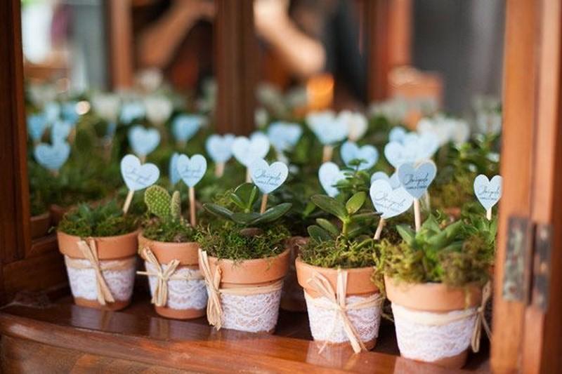 lembrancinha sustentavel mudas de plantas