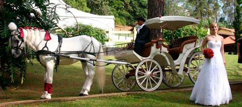 entrada da noiva com carruagem, conto de fadas