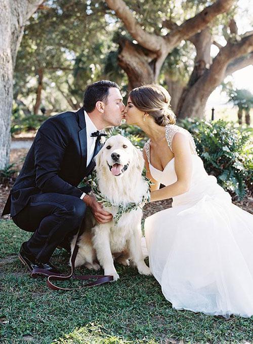entrada da noiva com animais de estimação
